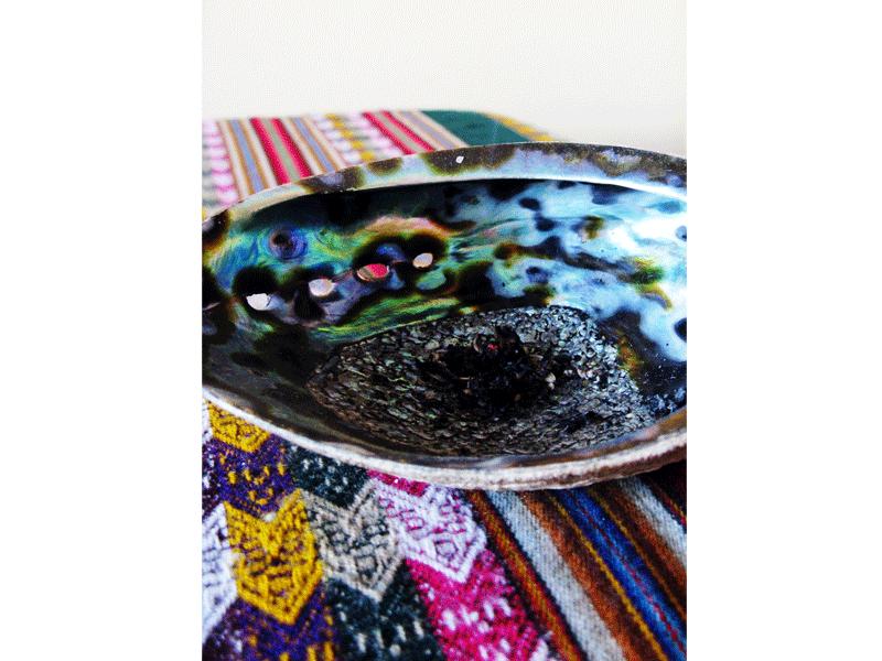 Ouroboros-Wellness-Sacred-Sage-Abalone-Shell